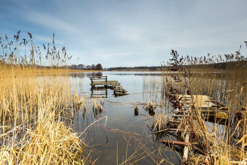 Het vroege landschap van het de lentemeer royalty-vrije stock afbeelding