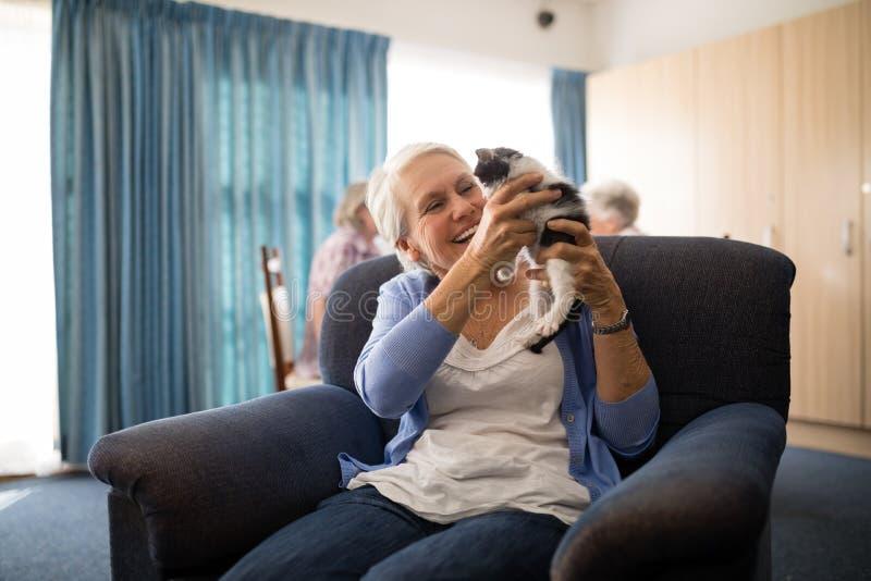 Het vrolijke hogere katje van de vrouwenholding terwijl het zitten op leunstoel royalty-vrije stock afbeeldingen
