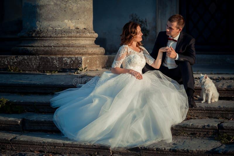 Het vrolijke modieuze jonggehuwdepaar houdt handen terwijl het zitten op de treden met de witte pluizige kat Oud kasteel royalty-vrije stock foto