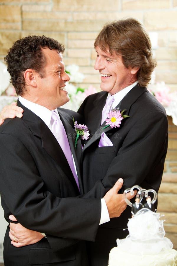Het vrolijke Paar van het Huwelijk omhelst stock afbeelding