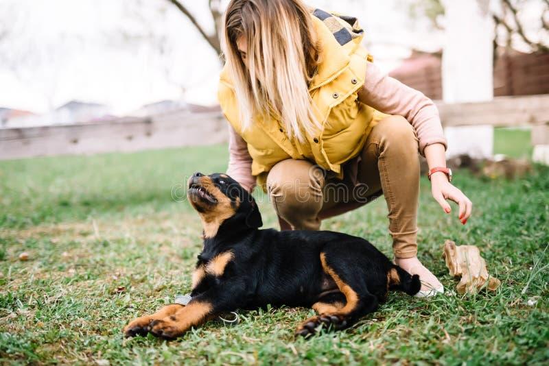Het vrolijke vrouw spelen met gelukkig rottweilerpuppy royalty-vrije stock fotografie