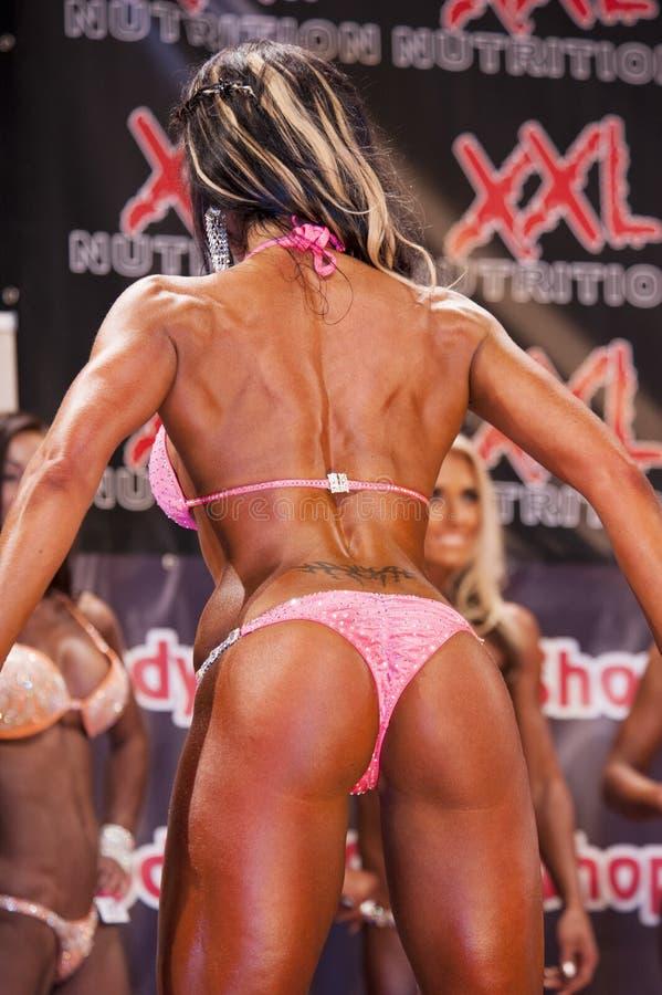 Het vrouwelijke bodyfitnessmodel in rug stelt en doorboort bikini stock foto