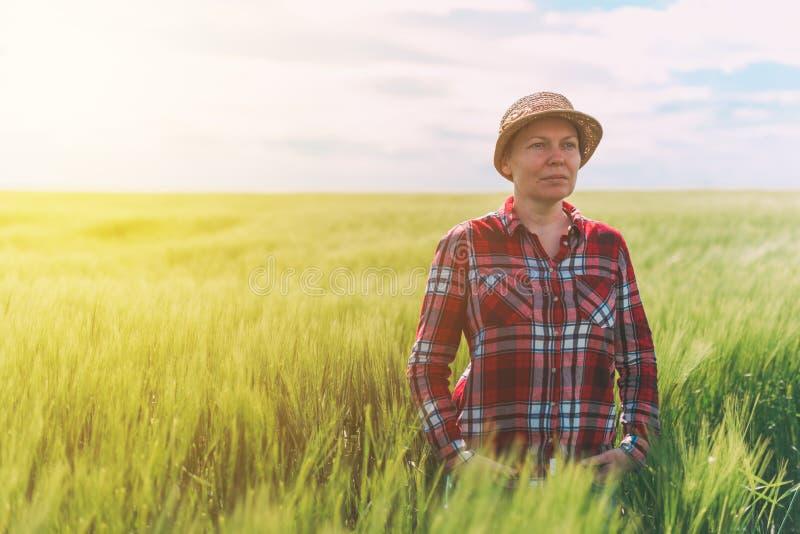 Het vrouwelijke landbouwer stellen op gecultiveerd tarwegebied stock foto's