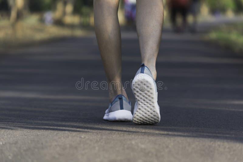 Het vrouwelijke lopen bij de ochtend voor opwarmingslichaam voor jogging en oefening royalty-vrije stock fotografie
