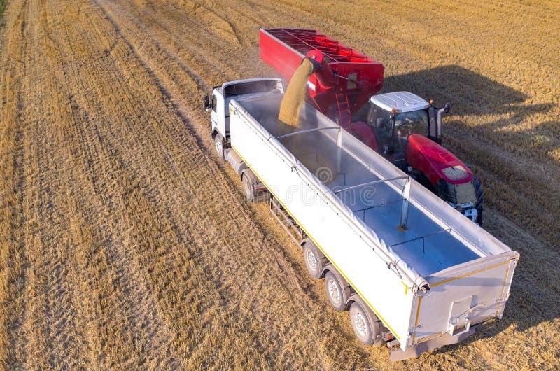Het vullen van de vrachtwagen met tarwezaden stock afbeelding