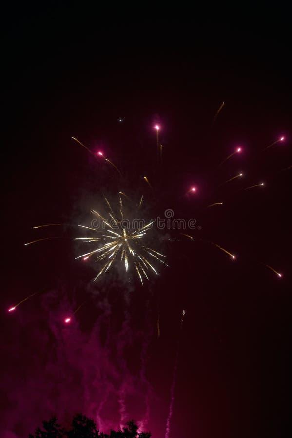 Het vuurwerk toont stock afbeelding