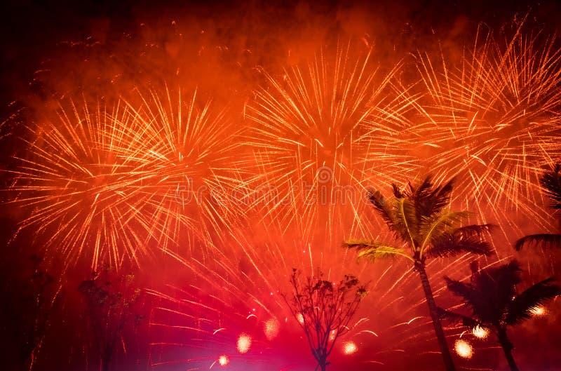 Het vuurwerk van de vakantie royalty-vrije stock afbeeldingen