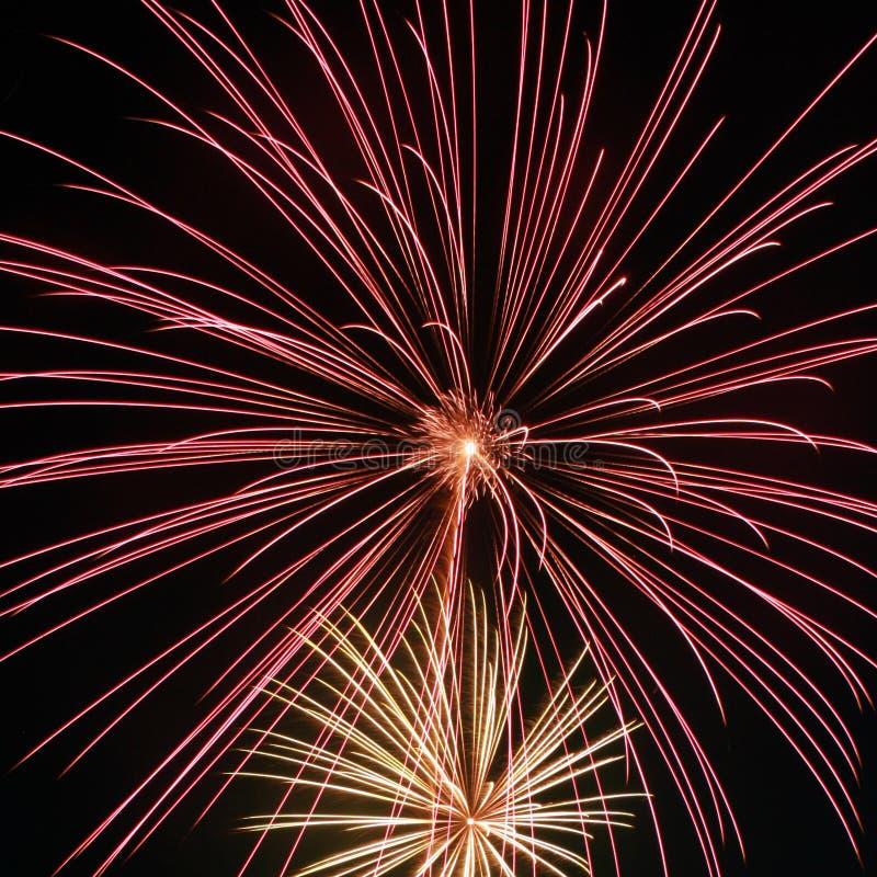 Het vuurwerk vult de lucht stock fotografie