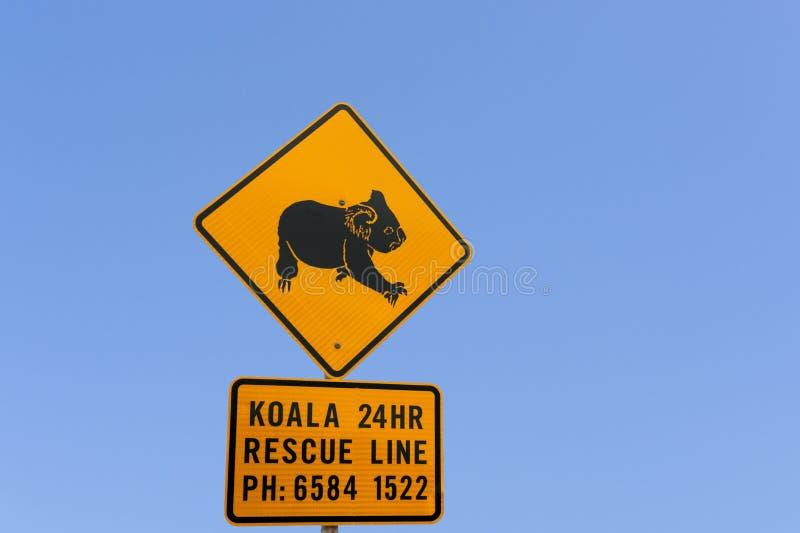 Het waarschuwingssein van de koala stock foto's