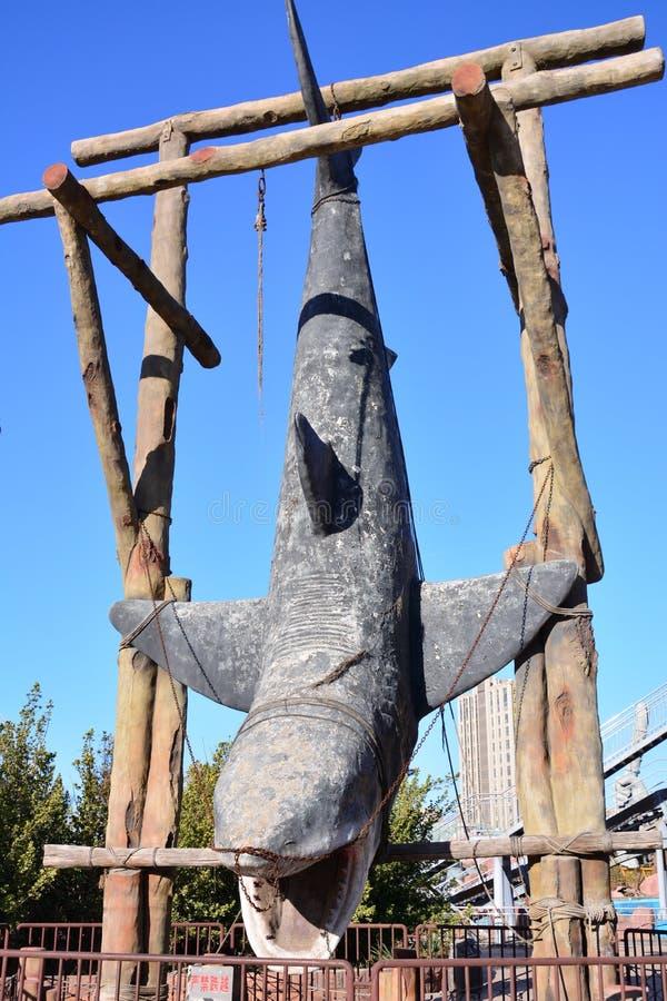 Het wachten op de dood van walvis royalty-vrije stock afbeelding