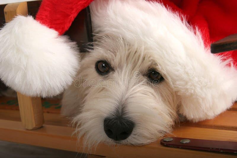 Het wachten op de Kerstman stock fotografie