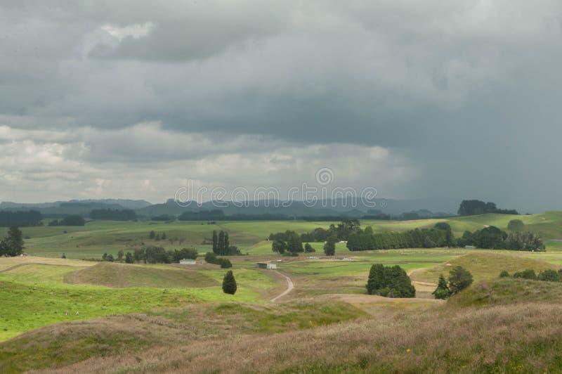 Het wachten op onweer Landelijk Nieuw Zeeland royalty-vrije stock foto