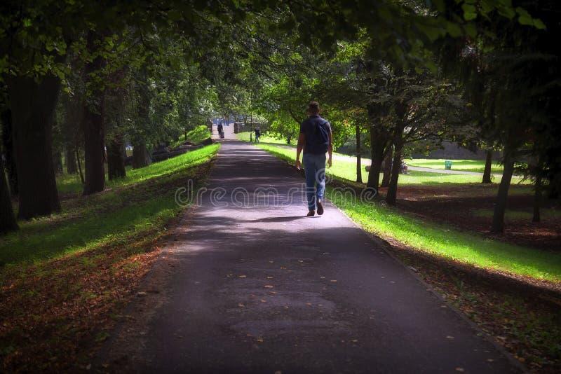 Het wandelen door Bute-Park stock foto