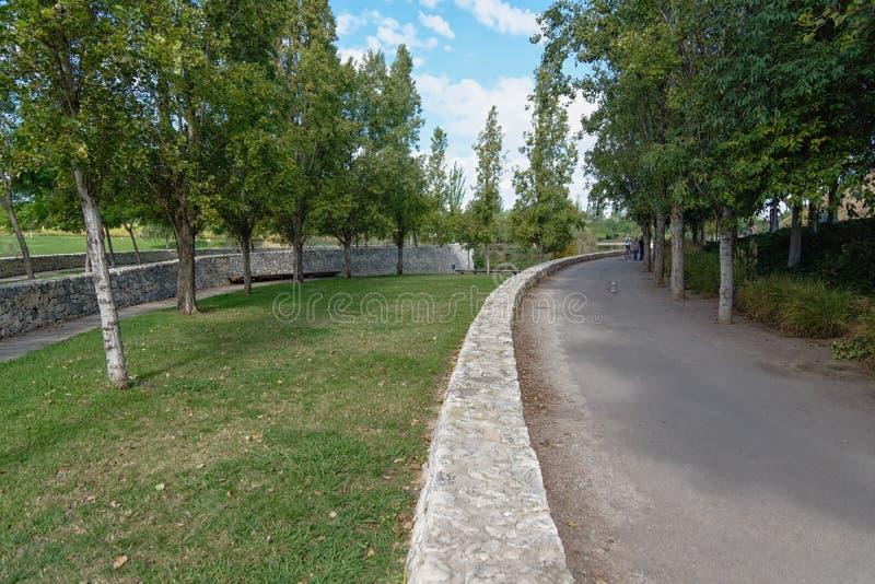 Het wandelen door het stedelijke park royalty-vrije stock afbeelding