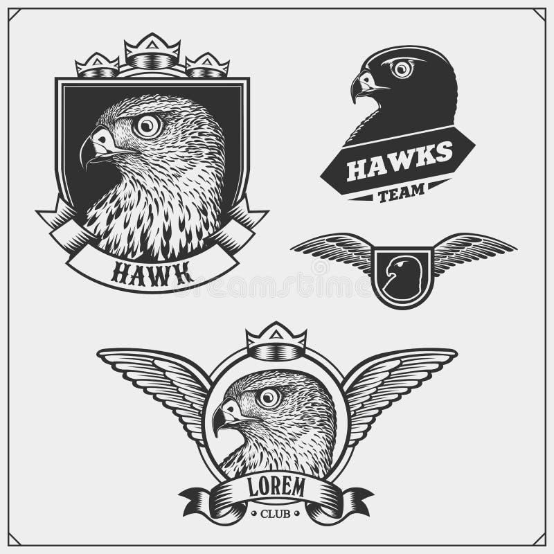 Het wapenschild van de havikswapenkunde Etiketten, emblemen en ontwerpelementen voor sportclub Drukontwerp voor t-shirts vector illustratie