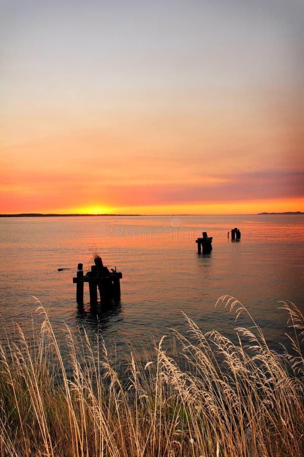 Het Water & het Gras van de zonsondergang stock afbeelding