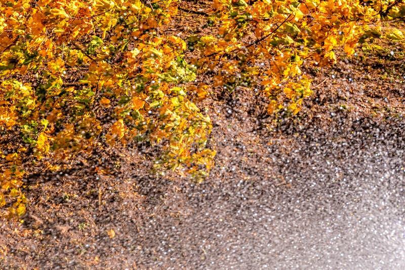 Het water dat uit de fontein stroomt en in het herfstpark stroomt Abstracte achtergrond van druppels Selectieve focus - afbeeldin stock foto