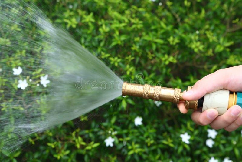 Het water geven stock afbeeldingen