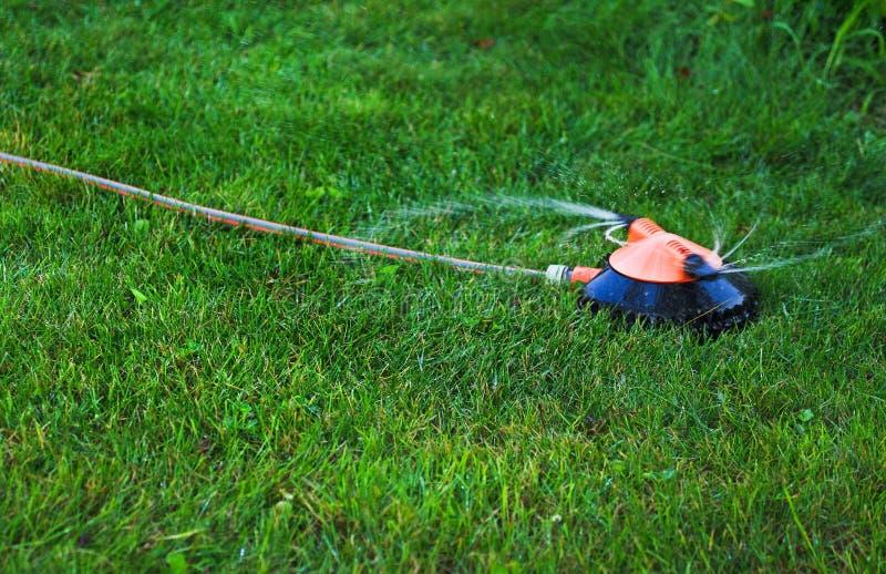 Het water geven van de tuin hulpmiddelen stock afbeelding