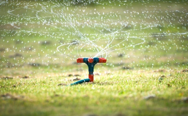 Download Het Water Geven Van De Tuin Systeem Met Spiraalvormige Nevels. Stock Foto - Afbeelding bestaande uit vers, achtergrond: 29503310