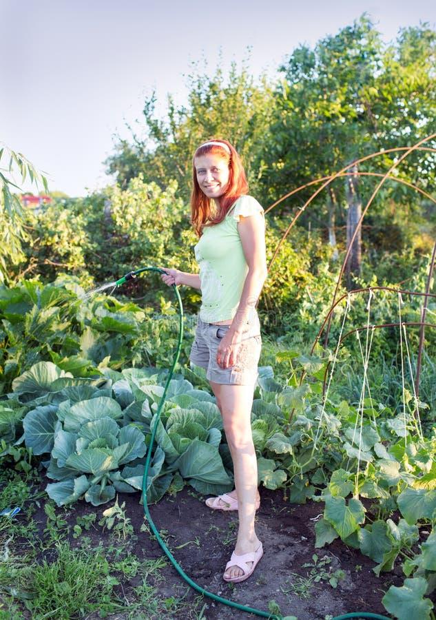 Het water geven van de vrouw tuin royalty-vrije stock afbeeldingen