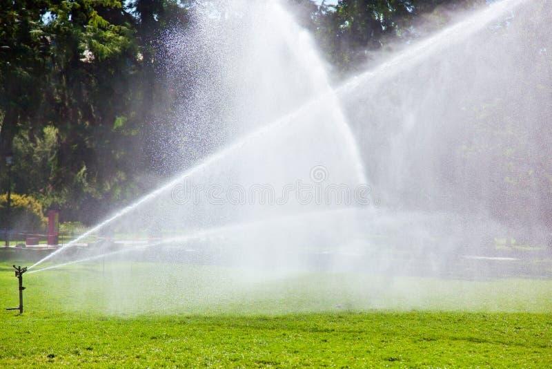 Het water geven van het gazon royalty-vrije stock fotografie