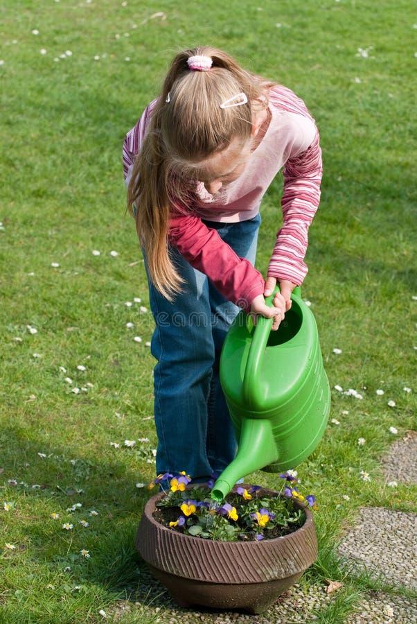 Het water geven van het meisje bloemen royalty-vrije stock afbeelding