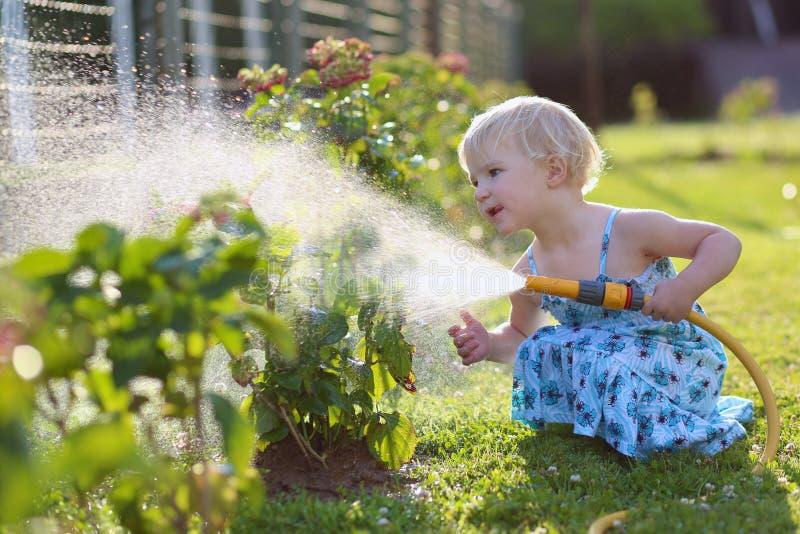 Het water geven van het meisje installaties in de tuin stock foto