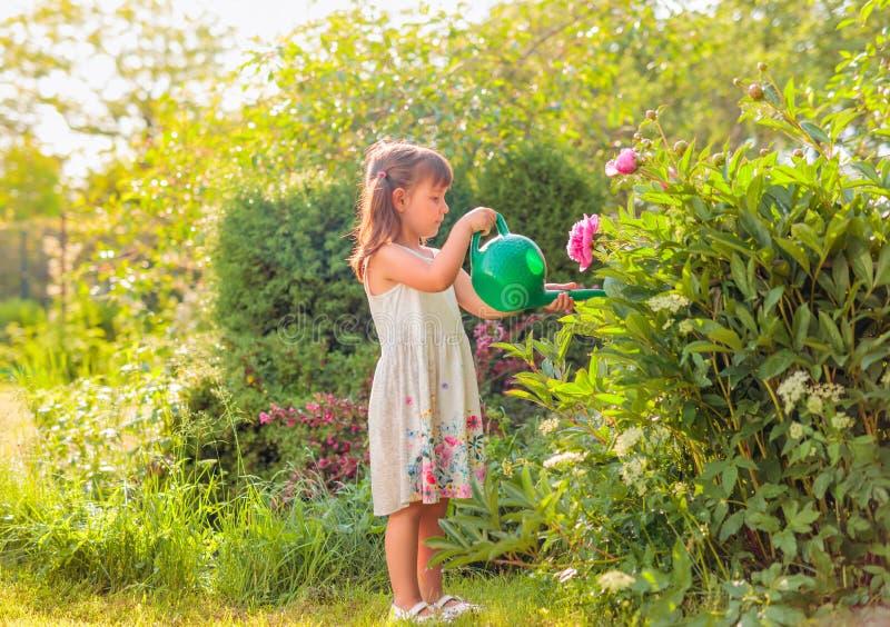 Het water geven van het meisje bloemen in de tuin stock afbeeldingen