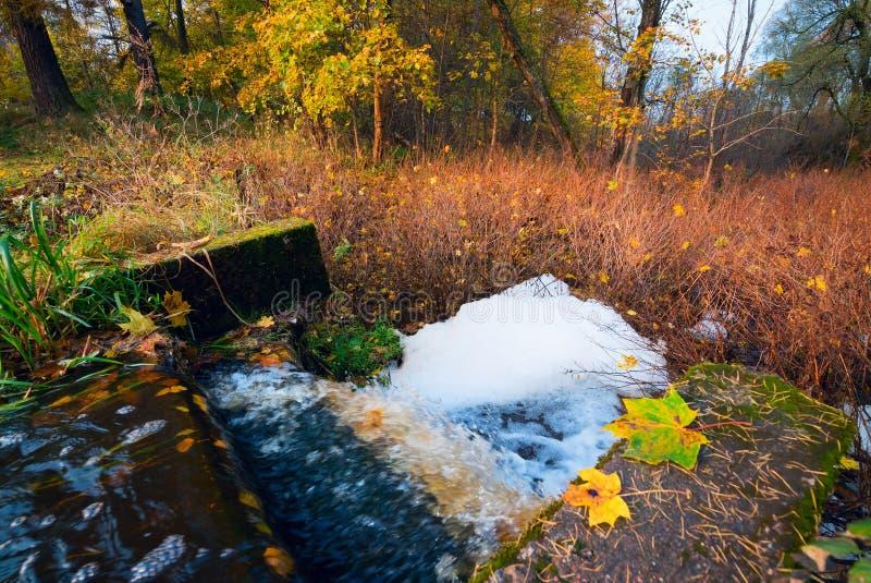 Het water stroomt van de vijver in de herfst royalty-vrije stock foto