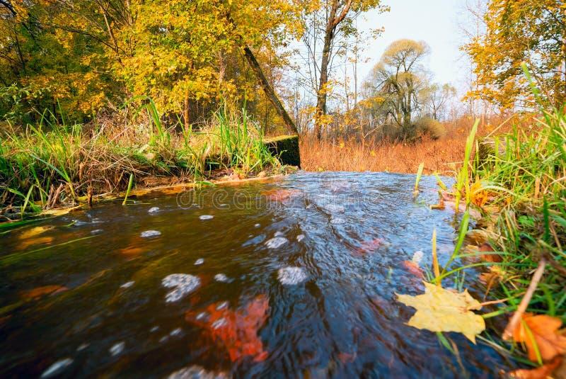 Het water stroomt van de vijver in de herfst stock afbeeldingen