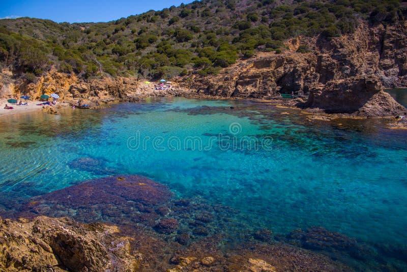 Het water van het de baaikristal van Sardinige beatifull met rots en boom royalty-vrije stock afbeelding