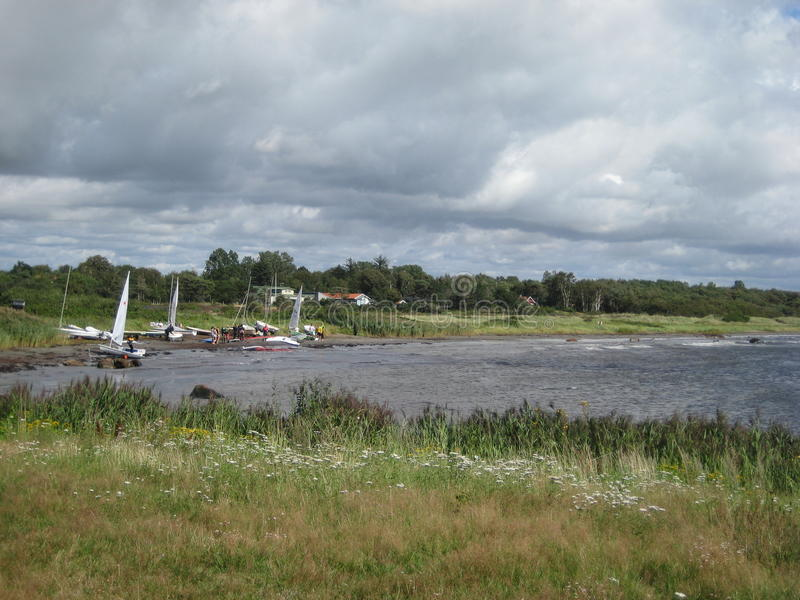 Het Water van Zweden Halmstad huisvest het varen het grijs van het de wolkengras van de botenzomer stock foto's