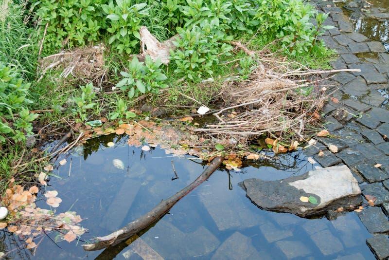 Het water wast stenen op de kust van het meer, een opgedroogde rivier stock fotografie