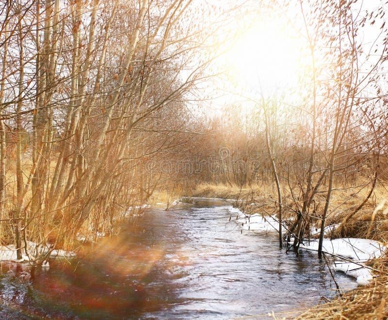 Het waterlandschap van de de lentekreek stock foto's