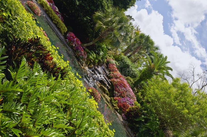 Het watertuin van Florida stock foto