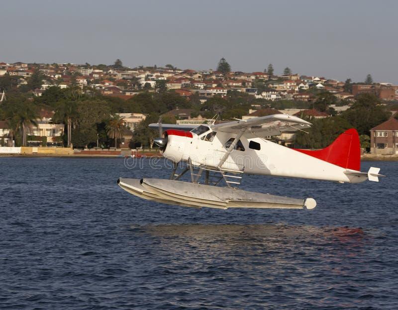 Het Watervliegtuig van de bever stock afbeelding