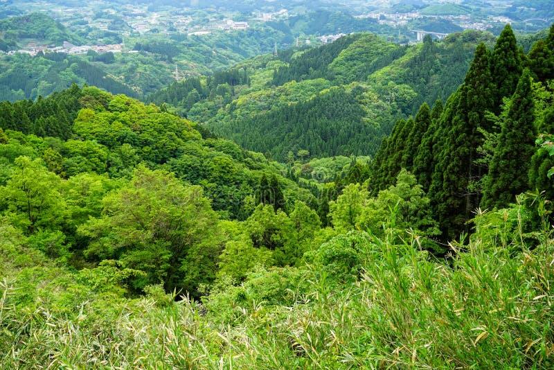 Het weelderige panorama van de groenberg en stadsmening van verafgelegen royalty-vrije stock afbeelding