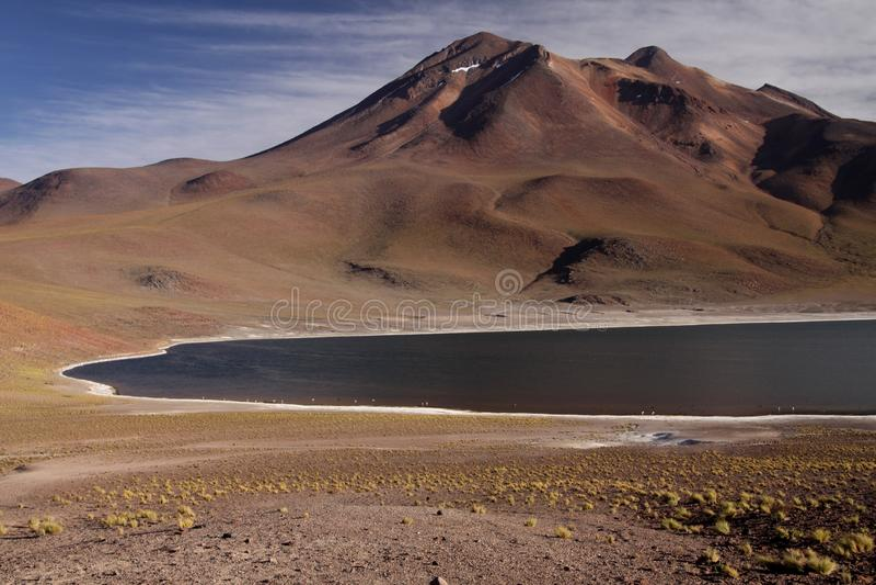 Het Weergeven op diep blauw meer bij de Lagune Miscanti van Altiplanic Laguna in Atacama-woestijn met sneeuw dekte gedeeltelijk k stock afbeeldingen