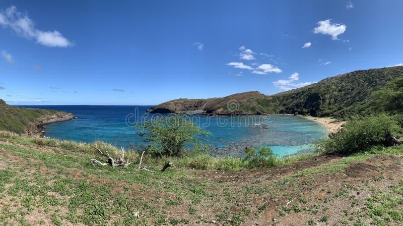 Het Weergeven van het de Baailandschap van Hawaï Hanauma van Gras en Oceaan royalty-vrije stock afbeeldingen