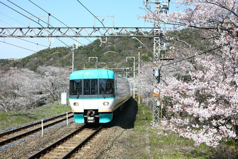 Het Weergeven van de lokale trein die van Wakayama op sporen reizen met bloeit royalty-vrije stock afbeeldingen