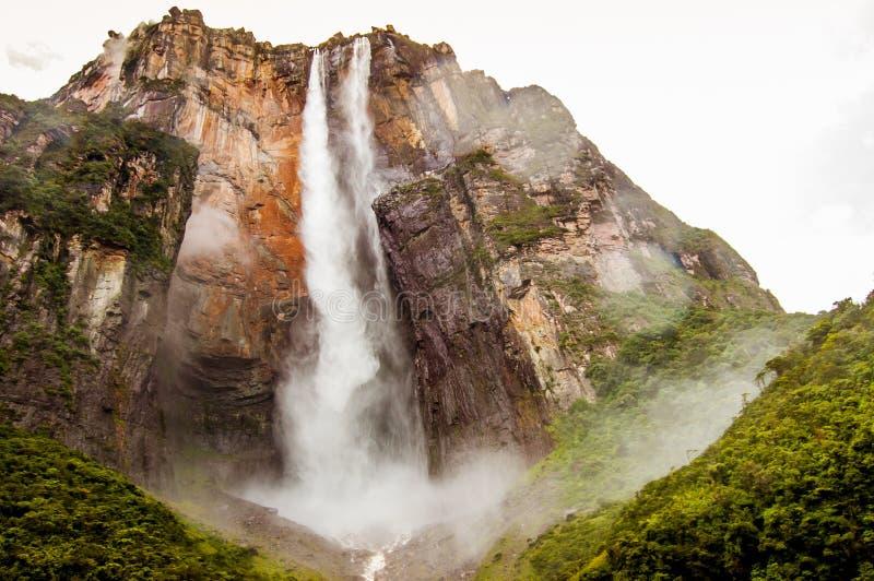 Het Weergeven van onderaan bos van engel valt in Venezuela in canaimapark, die een betekenis van ontdekking en ontzag geven royalty-vrije stock fotografie
