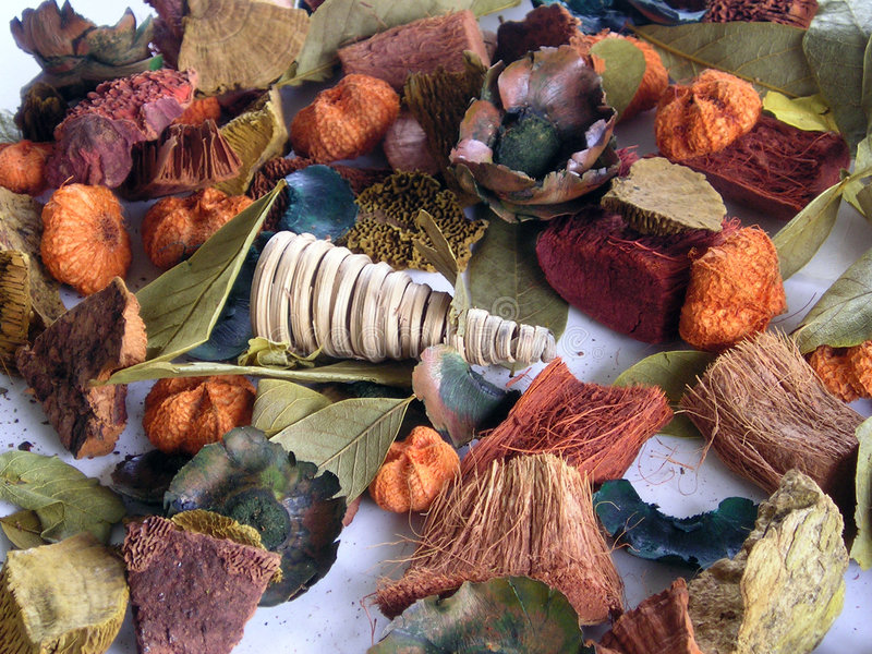 Het welriekend mengsel van gedroogde bloemen en kruiden van de herfst stock foto's
