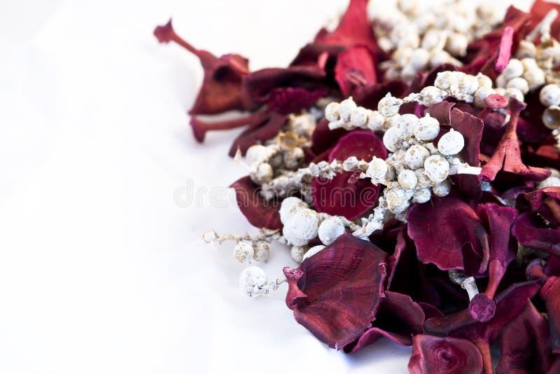 Het welriekend mengsel van gedroogde bloemen en kruidenbloemen van Kerstmis op witte achtergrond royalty-vrije stock afbeeldingen