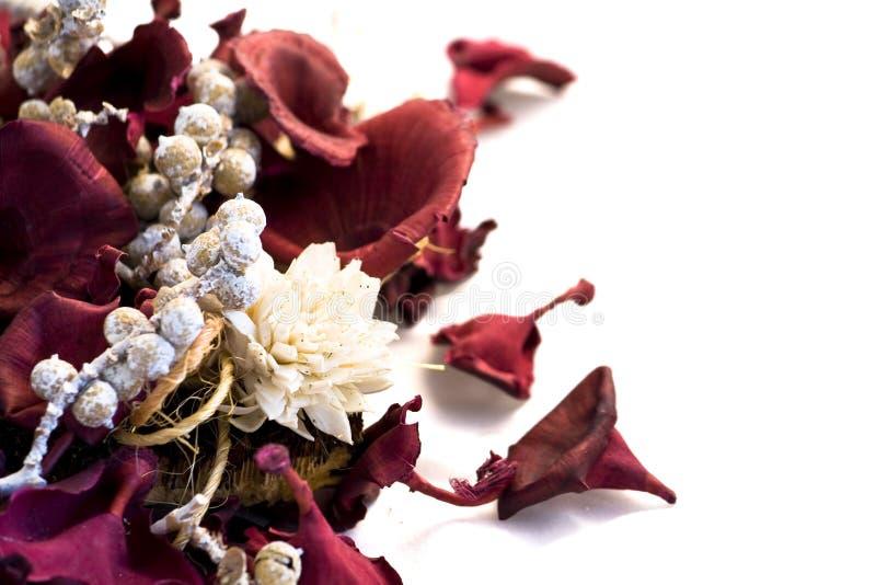Het welriekend mengsel van gedroogde bloemen en kruidenbloemen van Kerstmis op witte achtergrond stock fotografie