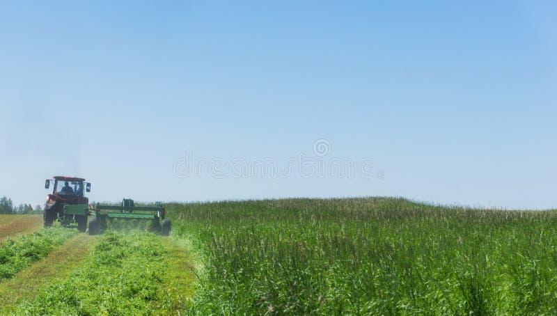 Het werk aangaande een landbouwlandbouwbedrijf Een rode tractor snijdt een weide royalty-vrije stock foto