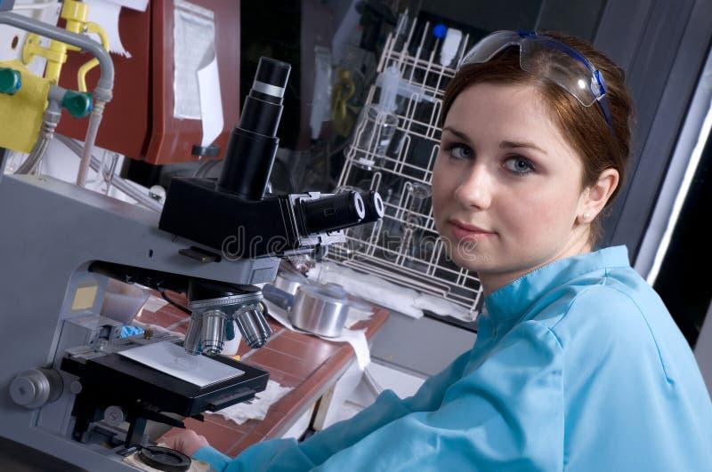 Het werk in het laboratorium stock fotografie