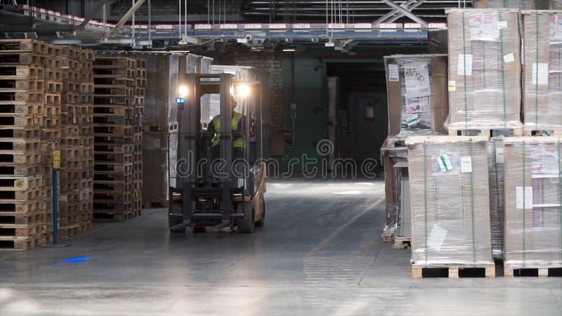 Het werk van het vorkheftoestel in groot pakhuis klem Magazijnmeesterarbeider met vorkheftruck Pakhuisrek van het Bedrijf stock afbeelding