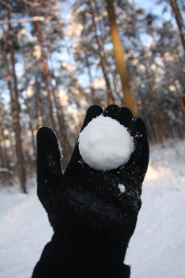 Het werpen van de sneeuwbal royalty-vrije stock foto's