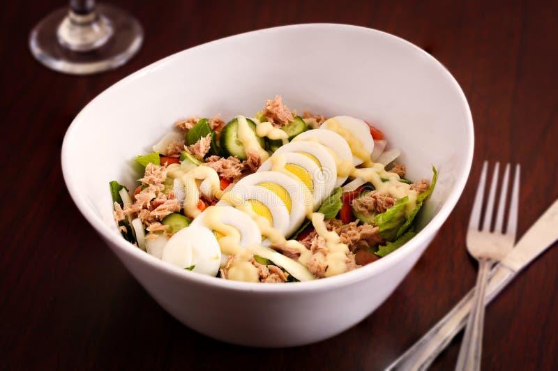Het westen - Afrikaanse Tuna Salad stock afbeelding